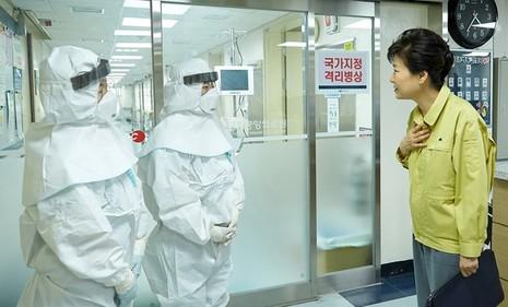 Chùm ảnh cúm Trung Đông 'tấn công' Hàn Quốc - ảnh 6