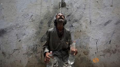 Nắng nóng 44 độ C giết chết gần 800 người - ảnh 1