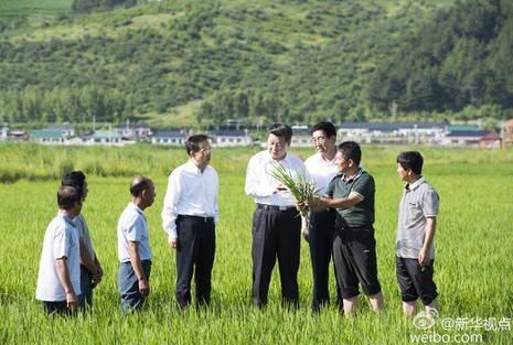 Ông Tập Cận Bình thăm vùng biên giới 'nhạy cảm' với Triều Tiên - ảnh 2