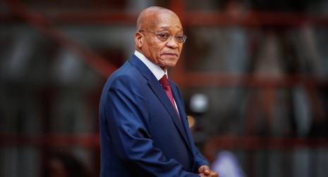 Tổng thống Nam Phi nhập viện vì sỏi mật - ảnh 1