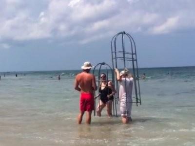 Đeo lồng sắt tự chế tắm biển phòng cá mập tấn công - ảnh 1