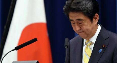 Nhật sẽ phản đối Mỹ nếu báo cáo của Wikileaks là chính xác - ảnh 1