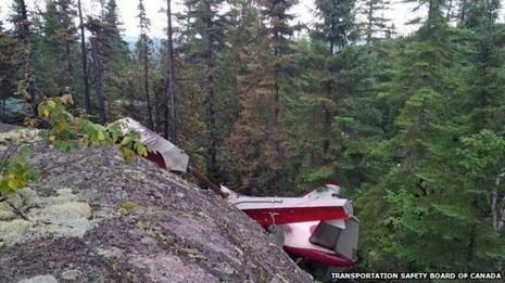 Máy bay chở du khách rơi, tất cả đều thiệt mạng - ảnh 1