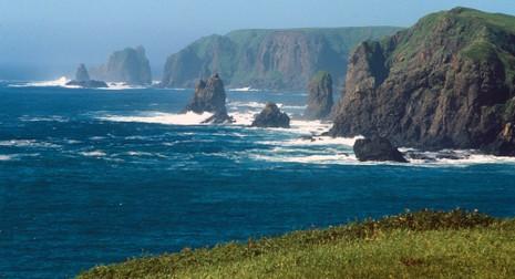 Nga 'rối trí' trước phản ứng của Nhật về quần đảo Kuril  - ảnh 1