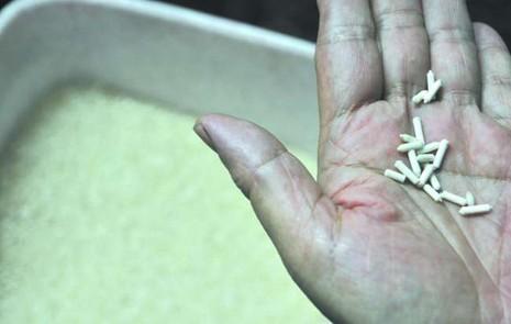 Sau gạo nhựa, phát hiện gạo giấy tại Trung Quốc - ảnh 1