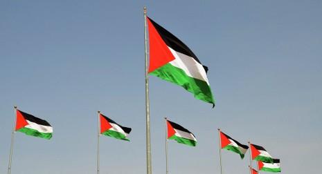 Palestine được phép treo cờ tại trụ sở Liên Hợp Quốc - ảnh 1