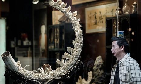 'Nữ hoàng ngà voi' Trung Quốc sa lưới pháp luật - ảnh 1