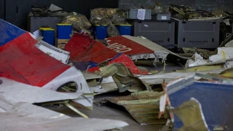Hà Lan sắp công bố báo cáo cuối cùng vụ MH17  - ảnh 2
