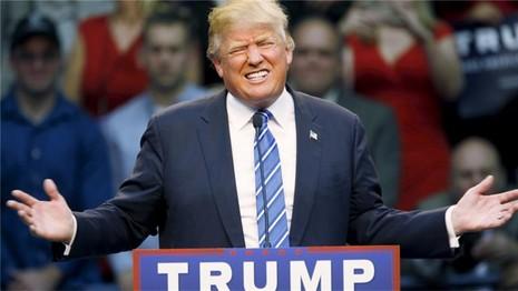 Donald Trump muốn cấm người Hồi giáo vào Mỹ - ảnh 1