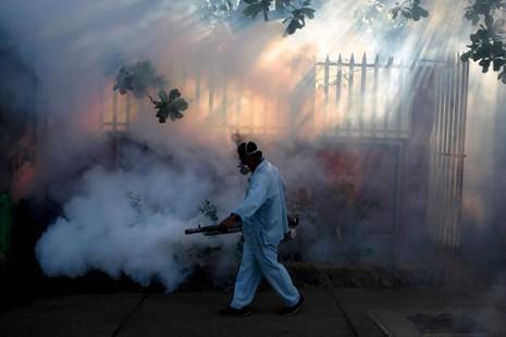 Dịch Zika bùng phát kinh hoàng ở xứ nhiệt đới - ảnh 1