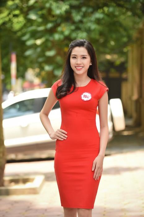 Ngắm 32 nhan sắc của cuộc thi Hoa hậu Việt Nam 2016 - ảnh 4