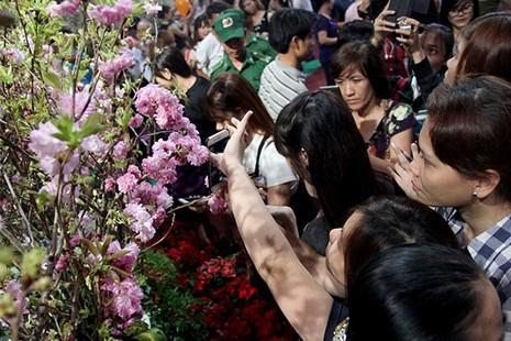 Bí thư Đinh La Thăng chụp ảnh với dân bên hoa anh đào - ảnh 14