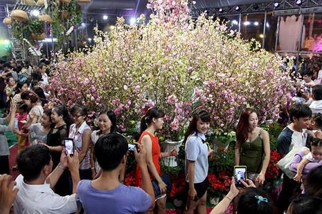 Bí thư Đinh La Thăng chụp ảnh với dân bên hoa anh đào - ảnh 13