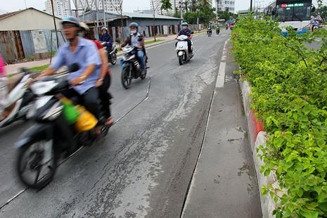 Đại lộ đẹp nhất TP.HCM xuất hiện nhiều vết nứt lạ - ảnh 7