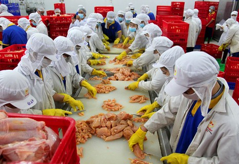 Mặt trận Tổ quốc đi giám sát an toàn thực phẩm  - ảnh 4