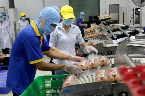 Mặt trận Tổ quốc đi giám sát an toàn thực phẩm  - ảnh 9