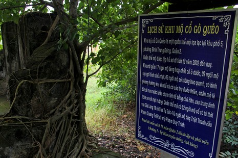 Chùm ảnh: Khu mộ cổ độc đáo gần 200 năm ở Gò Quéo  - ảnh 3