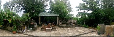 Chùm ảnh: Khu mộ cổ độc đáo gần 200 năm ở Gò Quéo  - ảnh 2