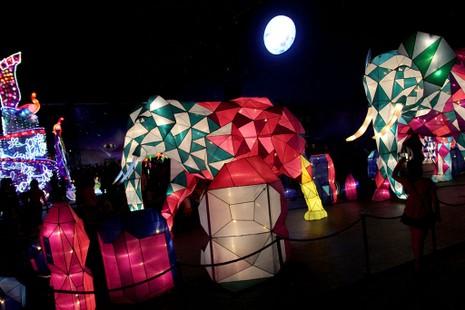 TP.HCM: Gần 20 con vật khổng lồ xuất hiện trong đêm Trung thu - ảnh 7