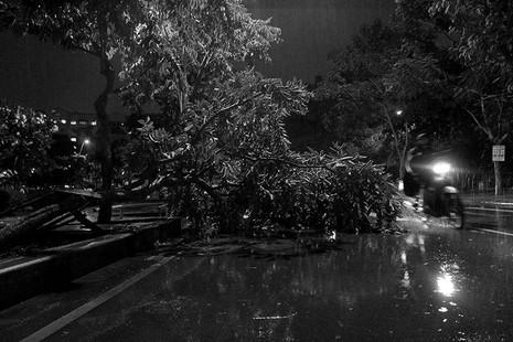 TP.HCM  mưa lớn, lại ngập nặng - ảnh 15