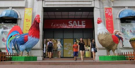 Cặp gà khổng lồ xuống phố chụp ảnh cùng người dân TP - ảnh 1