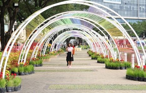 Lạ mắt vườn hoa đồng nội ở 'khu nhà giàu' - ảnh 16