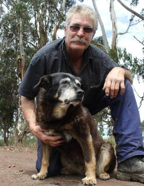 Cô chó già nhất thế giới qua đời  - ảnh 1