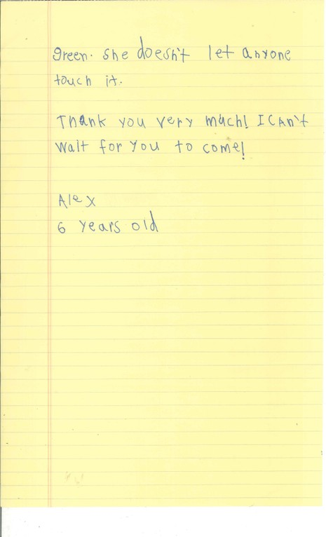 Cậu bé 6 tuổi xin Obama cho nhận nuôi em bé Syria - ảnh 4