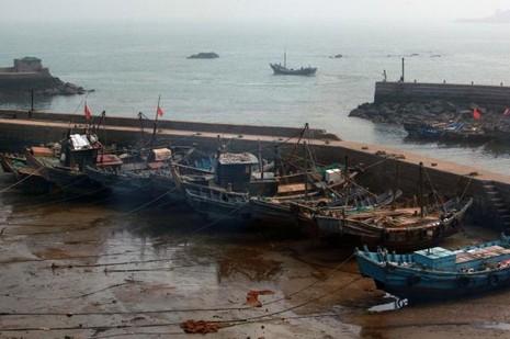 Tàu cá Trung Quốc ở TP biển Thanh Đảo (Trung Quốc).