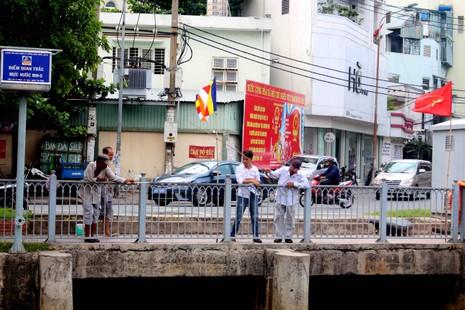 Sáng còn ngoi ngóp, chiều cá đã chết trắng xóa kênh Nhiêu Lộc  - ảnh 9