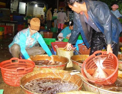 Kinh doanh thực phẩm an toàn mới được gia đình văn hóa - ảnh 1