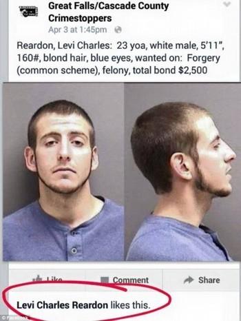 """Levi Charles Reardon nhấn """"like"""" bức ảnh truy nã của mình trên trang Facebook của cảnh sát"""