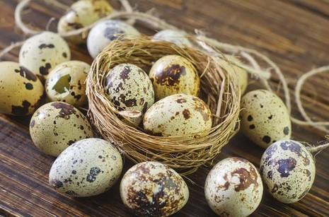 5 lợi ích tuyệt vời của trứng cút - ảnh 1