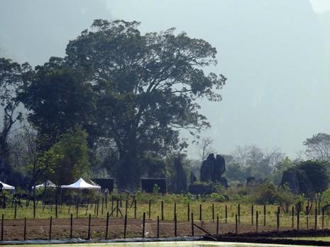 Cảnh quay đầu tiên của Kong: Skull Island ở làng 'vô danh' Yên Phú  - ảnh 6