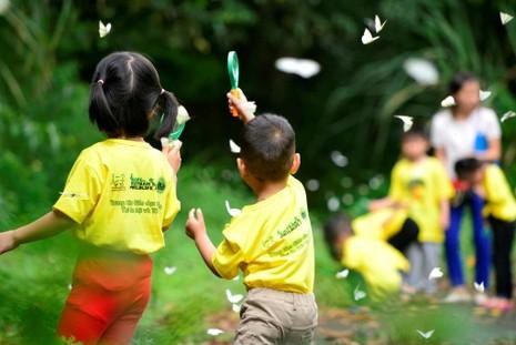 Vào rừng Cúc Phương ngắm bướm bay rợp trời - ảnh 13