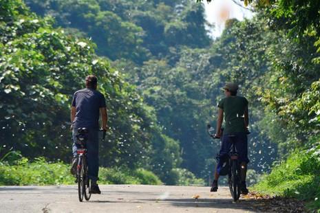 Vào rừng Cúc Phương ngắm bướm bay rợp trời - ảnh 18