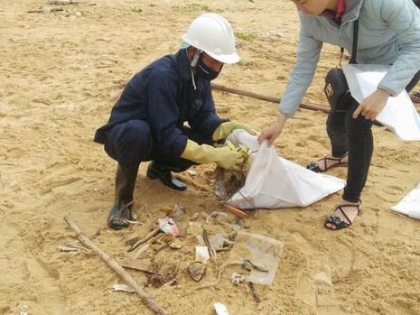 Thu gom 200 tấn rác tấp vào bờ biển Quảng Nam - ảnh 3