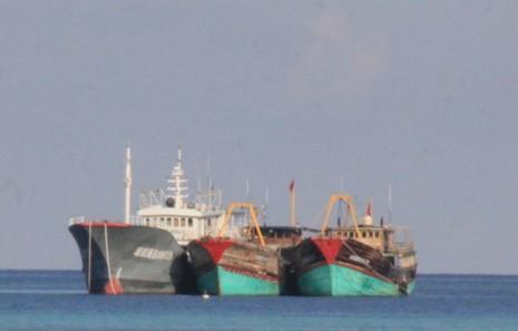 Cận cảnh công trình trái phép của Trung Quốc ở Gạc Ma và Huy Gơ - ảnh 9