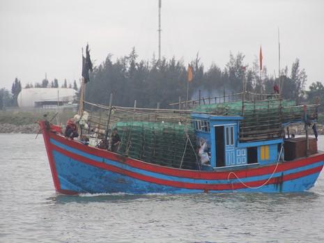 Quảng Nam: Chủ động cho học sinh nghỉ học khi bão vào - ảnh 1