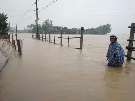 Quảng Nam: Hết ăn tết vì lũ vùi - ảnh 3