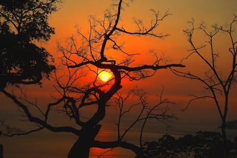 Sơn Trà đẹp ngỡ ngàng trong khoảnh khắc giao mùa - ảnh 14
