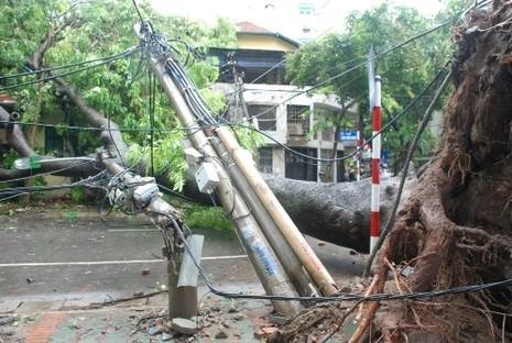 Thợ điện thủ đô nỗ lực khôi phục lưới điện sau bão - ảnh 1
