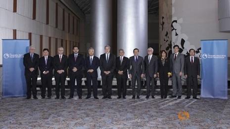 Nhật Bản: Thỏa thuận về 'nguyên tắc' của TPP sắp được công bố - ảnh 1