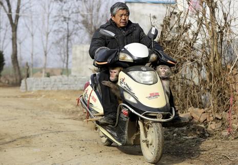 Làng 'tề thiên đại thánh' ở Trung Quốc - ảnh 6