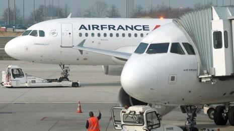 Giấu bé gái 4 tuổi trong hành lý mang lên máy bay sang Pháp - ảnh 1