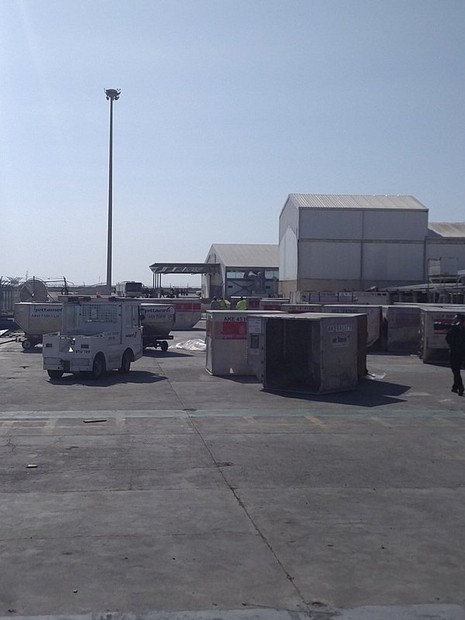 Vụ cướp máy bay Ai Cập: Tên không tặc đã bị bắt - ảnh 9