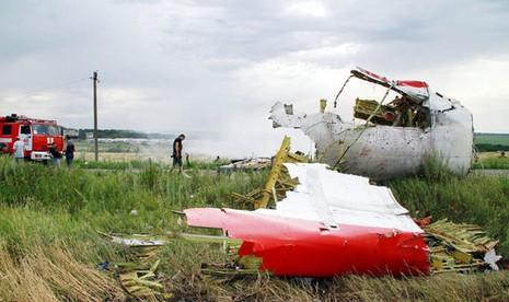 Xuất hiện giả thuyết 'gây sốc' về thủ phạm bắn hạ MH17 - ảnh 1