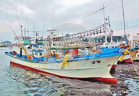 2 ngư dân Việt bị tố sát hại thuyền trưởng Hàn Quốc - ảnh 1