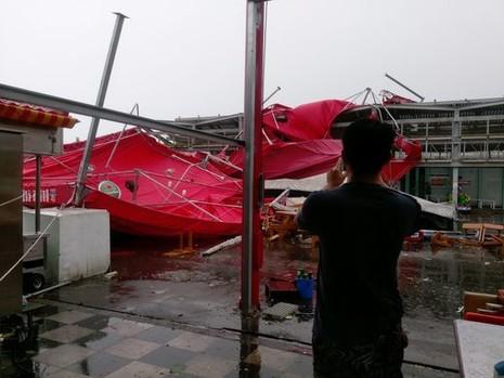 bão Megi