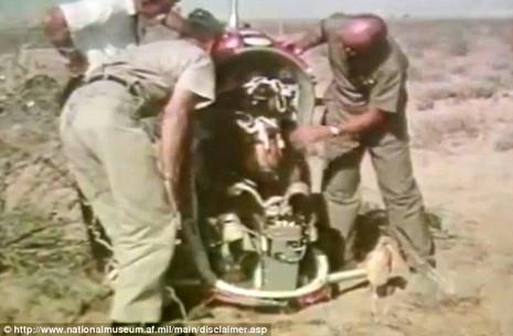 Không quân Mỹ dùng gấu thử nghiệm ghế thoát hiểm - ảnh 3